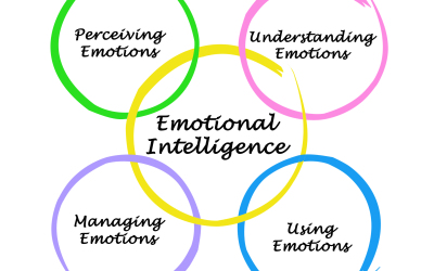 Our Emotional Intelligence Worksheets Explained